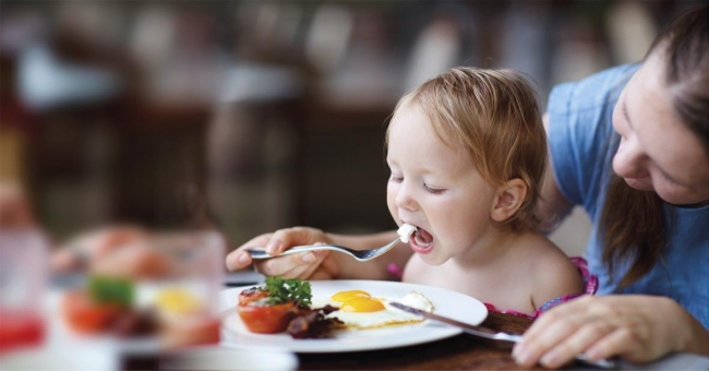 Alimentation - nutrition