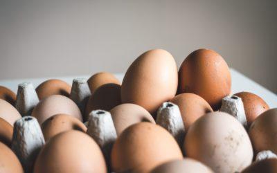 Les œufs Bleu-Blanc-Coeur sont désormais accessibles grâce à l'enseigne U !