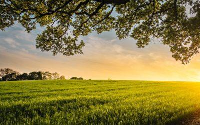 La ville de Liffré renouvelle son soutien au monde agricole !