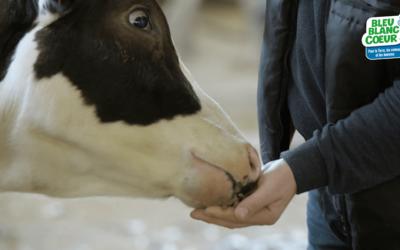 ONE HEALTH : Ces éléments nutritifs de la nature qui soignent les animaux et les hommes